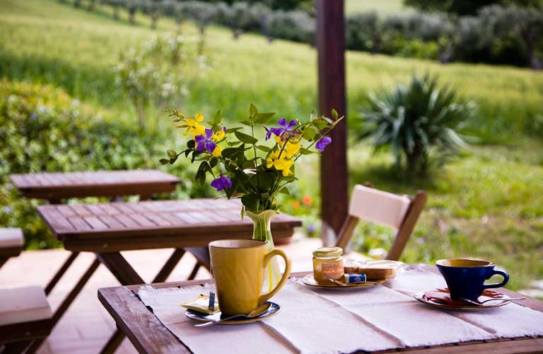 Bed & Breakfast Conero - Fiori di Campo